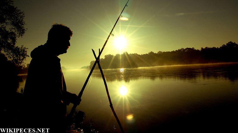Pescando siluros con caña - wikipeces.net