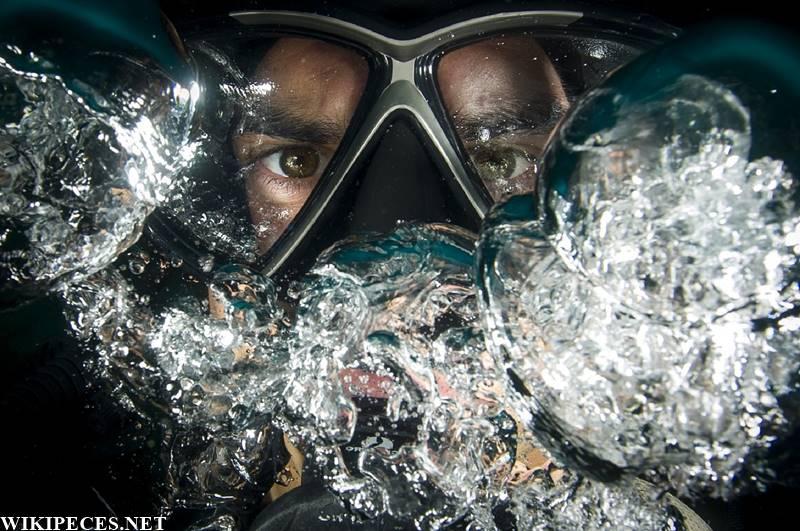 Pesca submarina pez limón - wikipeces.net