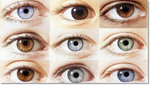 colores del iris de las personas