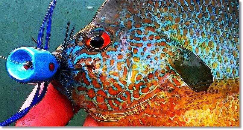 Pesca del percasol - wikipeces.net