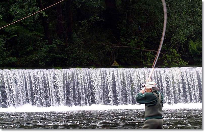Zona ideal para la pesca del sabalo alosa alosa. Fuente.santiagoturismo