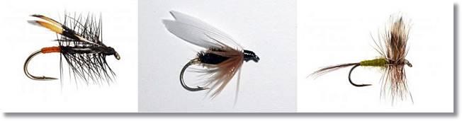 Ejemplos de tipos de moscas aptas para la pesca del tímalo- wikipeces.net